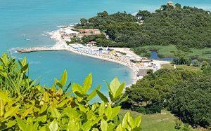 Italija, Markės regionas